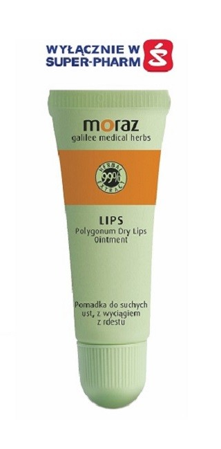 Moraz Lip Protector Balsam do ust 10 ml